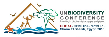 UN Biodiversity Conference Recap