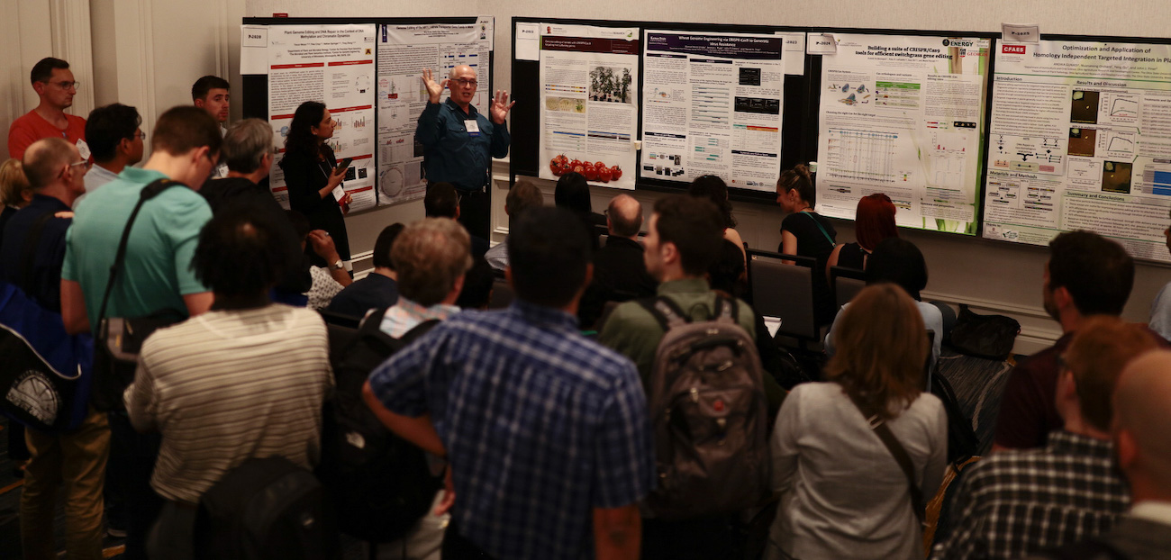 The interactive Poster sessions, where posters are presented as a talk to an audience, are a highlight of the SIVB meetings.